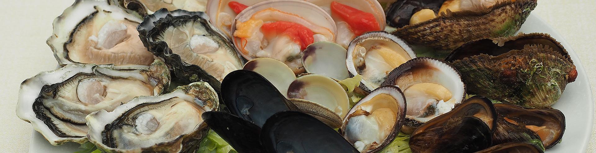 Ristorante Di Pesce Torino Ristò Civassa